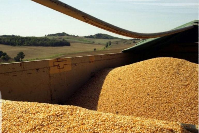 Partenariat Agronomique