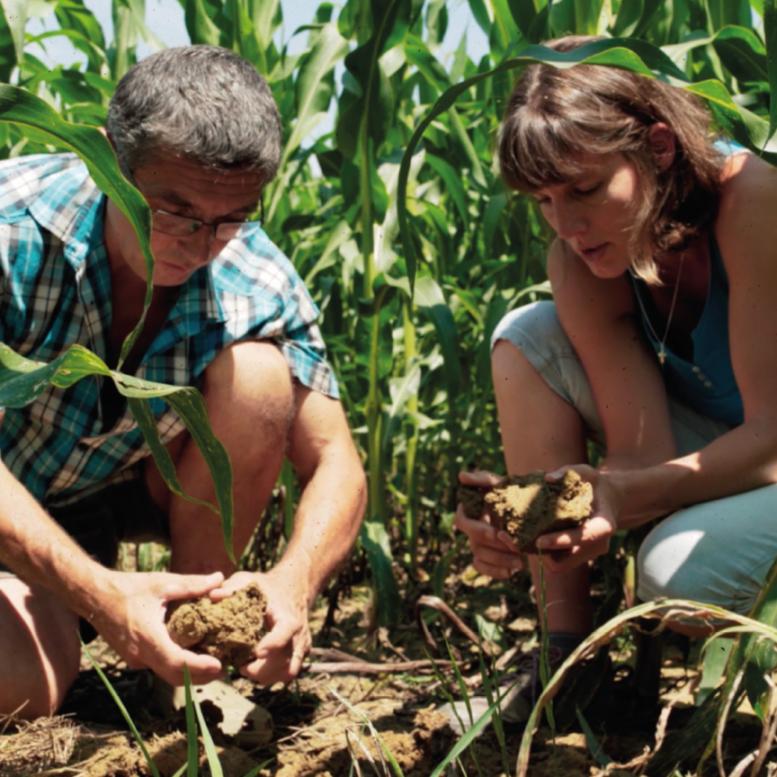 Agriculture de conservation des sols avec nos agriculteurs Nataïs