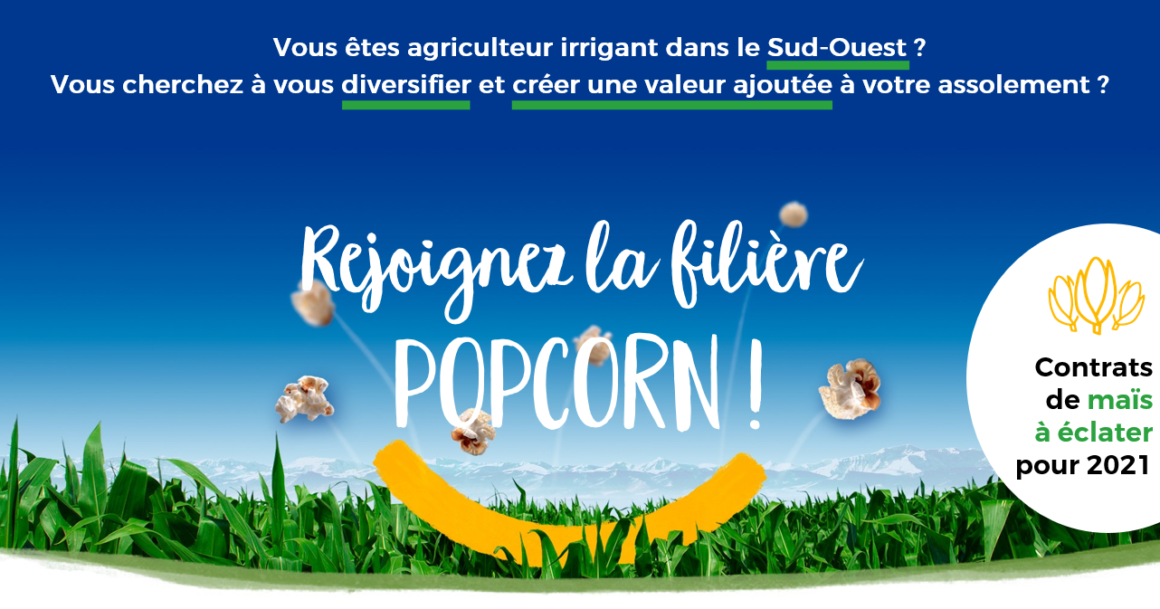 agriculteurs popcorn