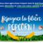 Rejoignez la filière Popcorn campagne 2021 – C'est par ici!